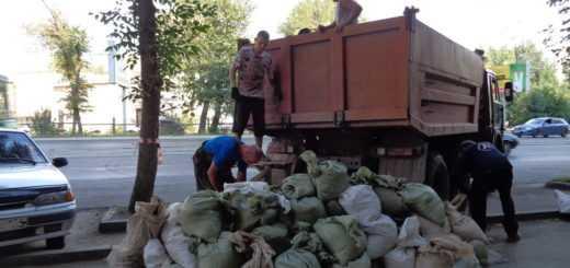 Вывоз строительного мусора из квартиры с грузчиками